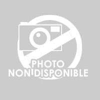 EPSON C13T580900 Cartouche